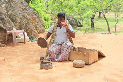Snake_charmer_in_Sri_Lanka