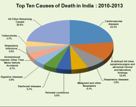 india causes of death